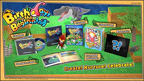Birthdays the Beginning: Limited Edition